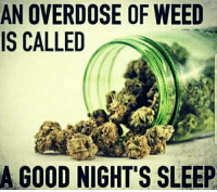 Memes, Weed, and Good: AN OVERDOSE OF WEED  IS CALLED  A GOOD NIGHT'S SLEEP A very good night @marijuana.tv