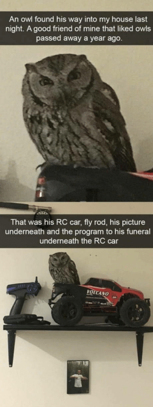 My House, Good, and House: An owl found his way into my house last  night. A good friend of mine that liked owls  passed away a year ago  That was his RC car, fly rod, his picture  underneath and the program to his funeral  underneath the RC car  VOLCANO Never tell me the owls