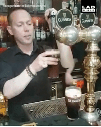 Dank, Pint, and 🤖: anaganlsion the Lake  ul  LAD  BIBL E  GUINNESS GUINNESS  8  GUINNESS Now THIS is how you drink a pint of Guinness! 🇮🇪👌