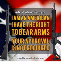Memes, Bear, and Bears: ANAM  LIHAVE THE RIGHT  TO BEAR ARMS  YOUR APPROVAL  NOTREQUIRED  www.NationalGunRights.org RIGHT!