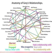 Adele, Dennyu0027s, And Memes: Anatomy Of Greyu0027s Relationships. Meredith Grey  April Kepner