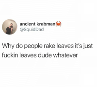 Dank, Dude, and Ancient: ancient krabman  @SquidDad  Why do people rake leaves it's just  fuckin leaves dude whatever