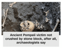 "God, Tumblr, and Blog: Ancient Pompeii victim not  crushed by stone block, after all,  archaeologists say <p><a href=""https://kaedien.tumblr.com/post/175451237092/thank-god-hes-okay"" class=""tumblr_blog"">kaedien</a>:</p> <blockquote><p>thank god he's okay</p></blockquote>"