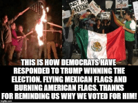 Anyone remember any Republicans rioting or burning flags in 2008 or 2012 after Obama won? Nope, me either.  The abhorrent behavior from Democrats rioting all across America tonight only solidifies my extreme joy that Trump won even more!   Good job Democrats! Hey? Wasn't it just you two weeks  ago lambasting Trump for saying he would wait until the election was over to say if he would concede? Well, the election is over, he won, and now a lot of you hypocrites won't concede. Get used it. #PresidentTrump for the next 4 years, you sniveling whining anti American crybabies.  By the way, I've seen more hate, bigotry, and awful shit said about Trump and his supporters today from liberals than I've ever heard Trump say about anybody.: AND  ewer to  the  THIS ISHow DEMOCRATS HAVE  RESPONDED TO TRUMP WINNING THE  ELECTION. FYING MEXICAN FLAGSAND  BURNING AMERICAN FLAGS THANKS  FOR REMINDING USWHYWEVOTE FORHIM!  imgfip.com Anyone remember any Republicans rioting or burning flags in 2008 or 2012 after Obama won? Nope, me either.  The abhorrent behavior from Democrats rioting all across America tonight only solidifies my extreme joy that Trump won even more!   Good job Democrats! Hey? Wasn't it just you two weeks  ago lambasting Trump for saying he would wait until the election was over to say if he would concede? Well, the election is over, he won, and now a lot of you hypocrites won't concede. Get used it. #PresidentTrump for the next 4 years, you sniveling whining anti American crybabies.  By the way, I've seen more hate, bigotry, and awful shit said about Trump and his supporters today from liberals than I've ever heard Trump say about anybody.