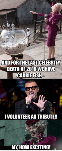 Death, Fish, and Michael: AND FORTHELAST CELEBRITY  DEATH OF 2016 WE HAVE  CARRIE FISH  I VOLUNTEER AS TRIBUTE!  MY, HOW EXCITING!  titch It!   George Michael: Hero