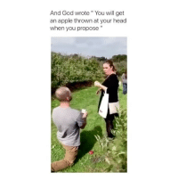 "Apple, God, and Head: And God wrote"" You will get  an apple thrown at your head  when you propose"" I bet that hurt! 😂 👉🏻(@bestvines couples) Credit: aggycee (Twitter)"