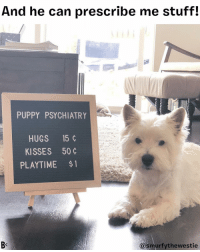 Memes, Heart, and Puppy: And he can prescribe me stuff!  PUPPY PSYCHIATRY  HUGS 15 ¢  KISSES 50  PLAYTIME $  @smurfythewestie A dog with a prescription pad!? Be still my heart 😍 @smurfythewestie MD psychiatrist Rx dog westie certified