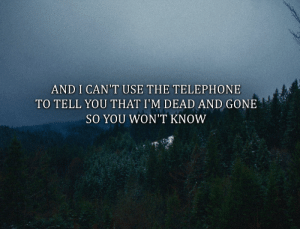 Tumblr, Blog, and Flowers: AND I CAN'T USE THE TELEPHONE  TO TELL YOU THAT I'M DEAD AND GONE  SO YOU WON'T KNOW brandnew-flowers: (You won't know - Brand New)