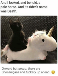 : And I looked, and behold, a  pale horse. And its rider's name  was Death.  Onward buttercup, there are  Shenanigans and fuckery up ahead.