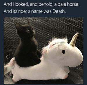 Death, Horse, and Name: And I looked, and behold, a pale horse  And its rider's name was Death.