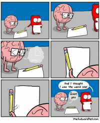 Memes, 🤖, and  Thoughts: And I thought  I was the weird one!  Quiet,  you.  theAwkwardyeti com