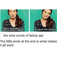 Memes, 🤖, and Felicia: AND IF YOU'RE ABOUT TO  YOU CAN,GO FUCK YOURSELF  LEAVEANASSHOLE COMMENT  the wise words of felicia day  The little smile at the end is what makes  it all work QUEEN