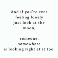 Http, Moon, and Net: And if you're ever  feeling lonely  just look at the  moon,  someone  somewhere  is looking right at it too. http://iglovequotes.net/