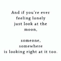 Http, Moon, and Net: And if you're ever  feeling lonely  just look at the  moon,  someone  somewhere  is looking right at it too http://iglovequotes.net/