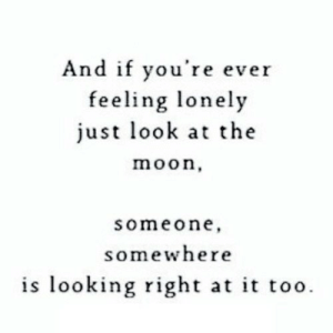 Moon, Net, and Looking: And if you're ever  feeling lonely  just look at the  moon,  someone  somewhere  is looking right at it too https://iglovequotes.net/