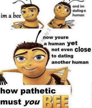me_irl: and im  dating a  human  im a bee  now youre  a human yet  not even close  to dating  another human  how pathetic  BEE  must you EE  Maize mees reddy 2! me_irl