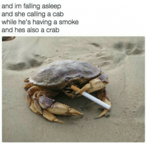 Irl, Me IRL, and Crab: and im falling asleep  and she calling a cab  while he's having a smoke  and hes also a crab Me_irl