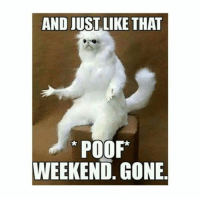 AND JUST LIKE THAT  POOF*  WEEKEND. GONE
