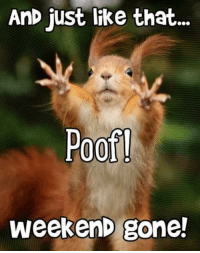 weekend: AnD just like that  Poof  weekenD gone!