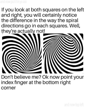 Ass, Meme, and Yo: and now put it in yo ass  If you look at both squares on the left  and right, you will certainly notice  the difference in the way the spiral  directions go in each squares. Well,  they're actually not!  Don't believe me? Ok now point your  index finger at the bottom right  corner  and now top left An optical illusion meme for your vision stimulations.