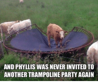Party, Trampoline, and Never: AND PHYLLIS WAS NEVER INVITED TO  ANOTHER TRAMPOLINE PARTY AGAIN