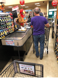 Free, Turkey, and Been: and  Save!  Free  Gas!  st  dew  he c  D I  Don't Forgen  The leel  SAFEWAY  Look for our brands!  a great value. This cashier dressed as a turkey has been gobbling over the intercom every few minutes