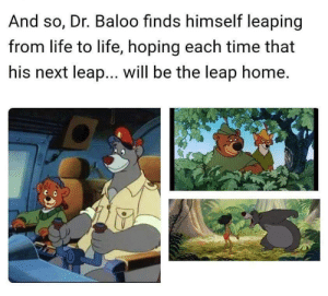 Life, Home, and Time: And so, Dr. Baloo finds himself leaping  from life to life, hoping each time that  his next leap... will be the leap home. Hopefully the last leap isnt at the zoo