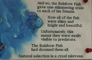Beautiful, Friends, and Fish: And so, the Rainbow Fish  gave one shimmering scale  to each of his friends.  Now all of the fish  were shiny and  bright and beautiful.  Unfortunately, this  meant they were easily  visible to predators.  The Rainbow Fish  had doomed them all.  Natural selection is a cruel mistress.
