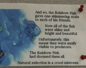 Beautiful, Friends, and Fish: And so, the Rainbow Fish  gave one shimmering scale  to each of his friends.  Now all of the fish  were shiny and  bright and beautiful.  Unfortunately, this  meant they were easily  visible to predators.  The Rainbow Fish  had doomed them all.  Natural selection is a cruel mistress. They had us in the first half