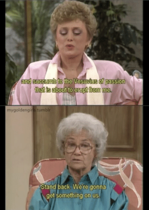 30 Brutal Burns Only The Golden Girls Could Pull Off - Dorkly Post: and  succumb  of passion  thatis about to erupt from me  mygoldengins tumblr  Stand back. Were gonna  get something on us 30 Brutal Burns Only The Golden Girls Could Pull Off - Dorkly Post