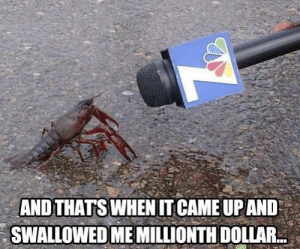 News, SpongeBob, and Real: AND THATS WHEN IT CAME UPAND  SWALLOWED ME MILLIONTH DOLLAR. Real news