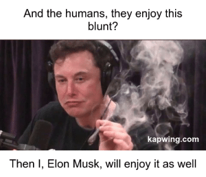 Elon Musk, Com, and Elon: And the humans, they enjoy this  blunt?  kapwing.com  Then I, Elon Musk, will enjoy it as well AI attempting to assimilate