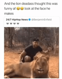 Af, Funny, and Memes: And the lion deadass thought this was  funny af look at the face he  makes  24/7 HipHop News  @BenjaminEnfield Mans had a mini heart attack 😭😂