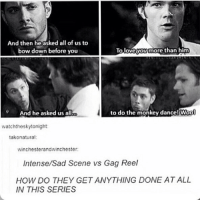 Heh sorry?: And then he asked all of us to  bow down before you  To loveyoy more than him  And he asked us all  to do the monkey dance! Woo  Wool  watchtheskytonight  takonatural:  winchesterandwinchester  Intense/Sad Scene vs Gag Reel  HOW DO THEY GET ANYTHING DONE AT ALL  IN THIS SERIES Heh sorry?