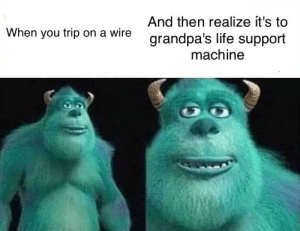 Life, Dank Memes, and Wire: And then realize it's to  When you trip on a wire  grandpa's life support  machine F