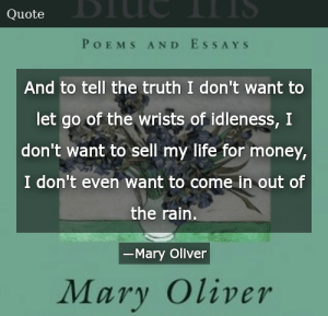 Mary Oliver Blue Iris Poems And Essays