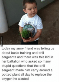 Dumb, Memes, and Army: and  today my army friend was telling us  about basic training and drill  sergeants and there was this kid in  her battalion who asked so many  stupid questions that the drill  sergeant made him carry around a  potted plant all day to replace the  oxygen he wasted When You Ask Too Many Dumb Questions http://www.damnlol.com/when-you-ask-too-many-dumb-questions-90618.html