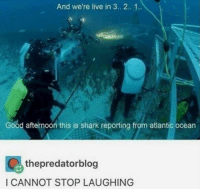 Shark, Good, and Live: And we're live in 3.. 2.. 1.  Good afternoon this is shark reporting from atlantic ocean  thepredatorblog  I CANNOT STOP LAUGHING