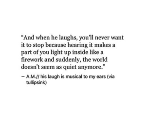 "Quiet, World, and Never: ""And when he laughs, you'll never want  it to stop because hearing it makes a  part of you light up inside like a  firework and suddenly, the world  doesn't seem as quiet anymore.""  -A.M.// his laugh is musical to my ears (via  tullipsink)"