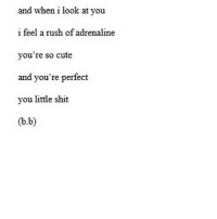 http://iglovequotes.net/: and when i look at you  i feel a rush of adrenaline  you're so cute  and you're perfect  you little shit  (b.b) http://iglovequotes.net/