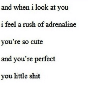 https://iglovequotes.net/: and when i look at you  i feel a rush of adrenaline  you're so cute  and you're perfect  you little shit https://iglovequotes.net/