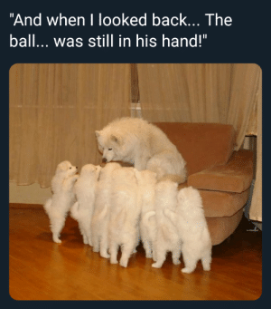 "Bamboozled again by Borkin_Bandit MORE MEMES: And when I looked back... The  ball... was still in his hand!"" Bamboozled again by Borkin_Bandit MORE MEMES"