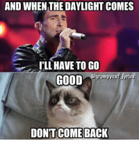 Grumpy Cat, Daylight, and And-When-The-Daylight: AND WHEN THE DAYLIGHT COMES  ILL HAVE TO GO  grumpycat lyrics  GOOD  DONTCOME BACK