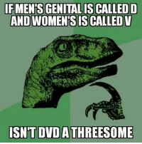 Advice, Tumblr, and Animal: AND WOMEN'S IS CALLED V  ISN'T DVD  A THREESOME advice-animal:  DVD