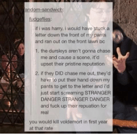 HP folder for Quinn Lizar ~Sic: ando  fudgeflies:  if i was harry, i would have stuck a  letter down the front of my pants  and ran out on the front lawn bc  1. the dursleys aren't gonna chase  me and cause a scene, it'd  upset their pristine reputation  2. if they DID chase me out, they'd  have to put their hand down my  pants to get to the letter and i'd  just start screaming STRANGER  DANGER STRANGER DANGER  and fuck up their repuation for  real  you would kill voldemort in first year  at that rate HP folder for Quinn Lizar ~Sic