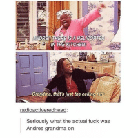 Grandma, Memes, and 🤖: ANDRE!! HERE  IS A HELIGOPTER  IN THE KITCHEN!  Grandma, that's just the ceiling fant  radioactiveredhead:  Seriously what the actual fuck was  Andres grandma on time zones are stupid and make me mad, reblog if you miss pangea