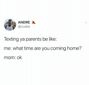Be Like, Parents, and Texting: ANDRE  @zvdre  Texting ya parents be like:  me: what time are you coming home?  mom: ok On point (credit and consent: @zvdre on Twitter)