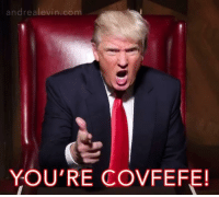 Covfefe: andrea levin com  YOU'RE COVFEFE!
