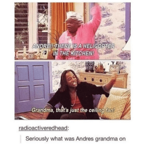 Grandma, Down, and Ceiling Fan: ANDREIISTHEREIS AHELICOPTER  IN THE KITICHEN!  Grandma, that's just the ceiling fan!  radioactiveredhead:  Seriously what was Andres grandma on Upside down heli