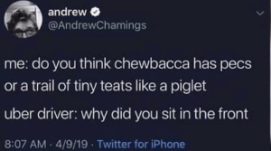 Meirl by Rasuco MORE MEMES: andrew  @AndrewChamings  me: do you think chewbacca has pecs  or a trail of tiny teats like a piglet  uber driver: why did you sit in the front  8:07 AM 4/9/19 Twitter for iPhone Meirl by Rasuco MORE MEMES